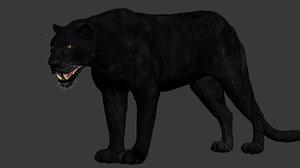 3dsmax cat feline