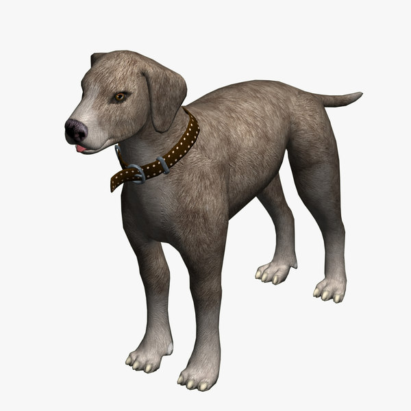 3d dog brown