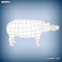 3d model base mesh hippo