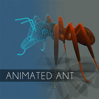 Animated ant insect textured and bumpmap