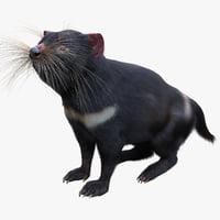 tasmanian devil fur pose 3d max
