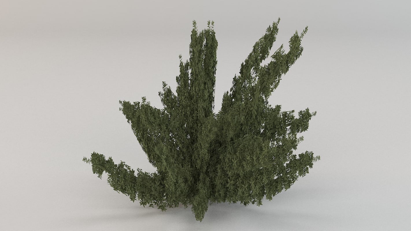3ds max foxtail fern