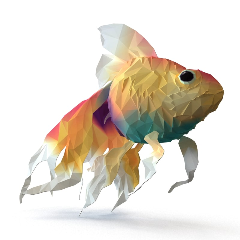 gold fish s
