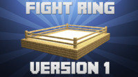 Minecraft - Fight Ring