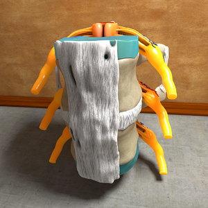 c4d human spine
