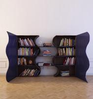 max bookcase books 8