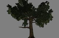 simple tree x free