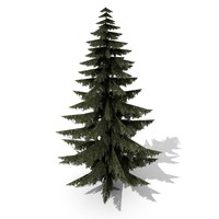 Lowpoly Spruce