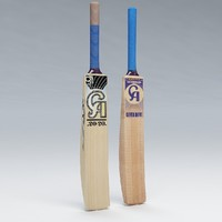 3d cricket bat ca model