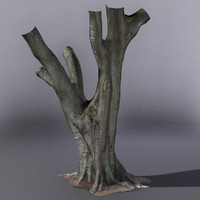 Fig Tree K Australian 3D SCAN