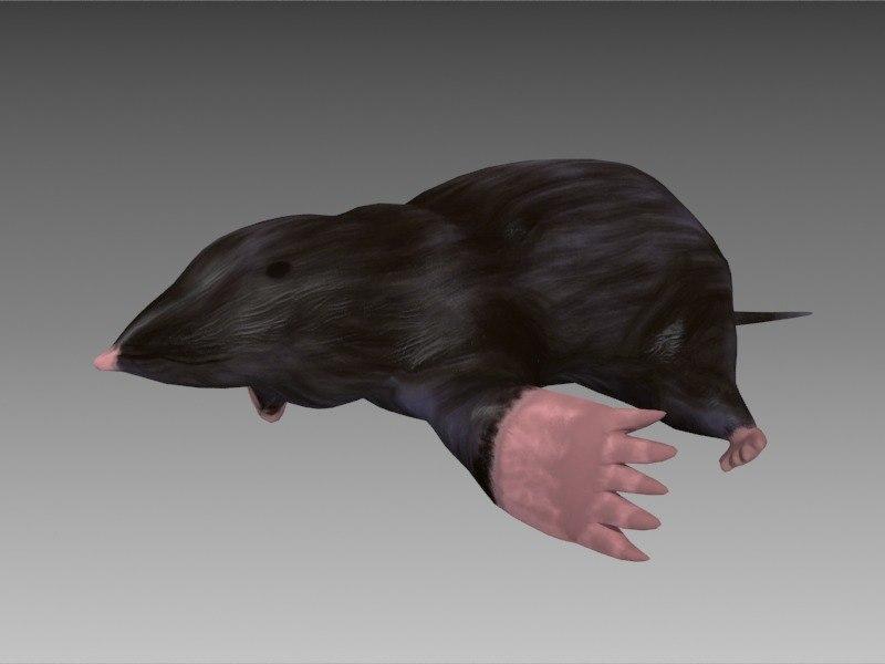 3d mole animation digging