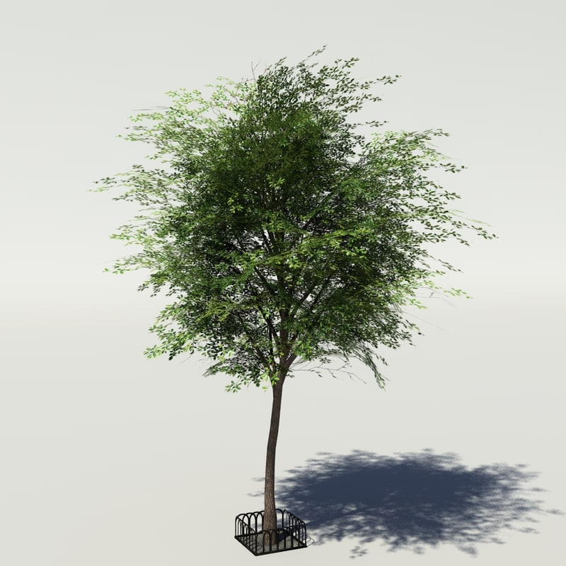 3ds max tree low-poly