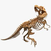 Dinosaur T-Rex Bones