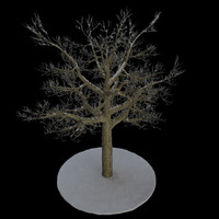 3d model tree 8 branches snow