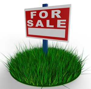 sale land max