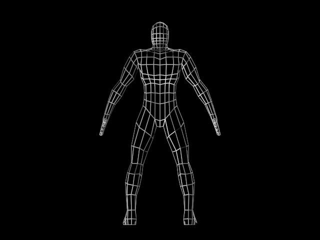 3d model of male mesh