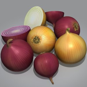 obj realistic onions