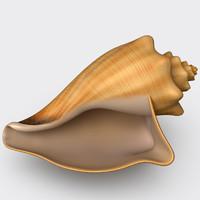 volema cochlidium seashell 3d max