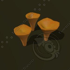 fungus cibarius cartoon 3ds