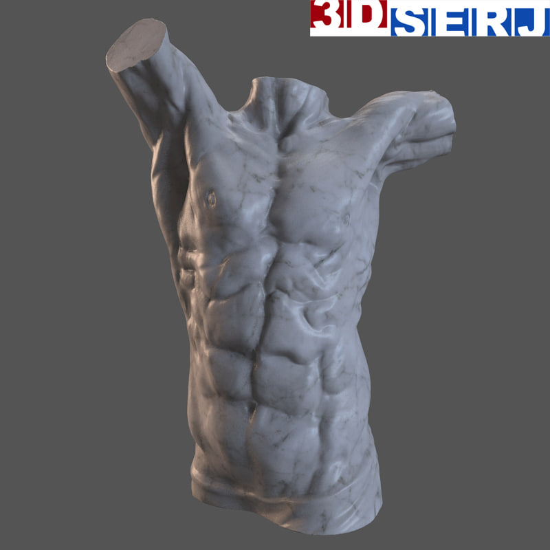 3d decorative bust man model