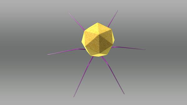 bacteriophage 3d model