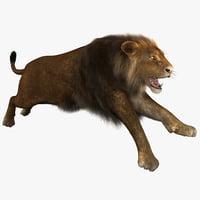 3d model lion pose 3