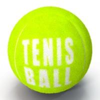 tennis ball furry fur 3d max