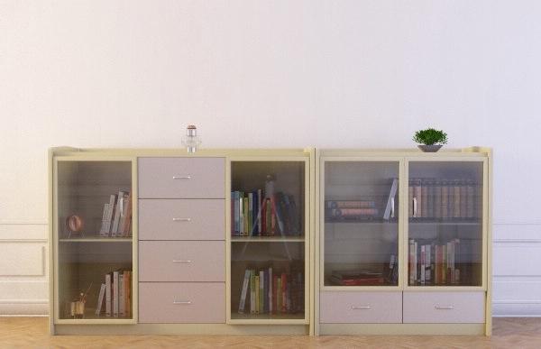bookcase 21 bookshelf books max