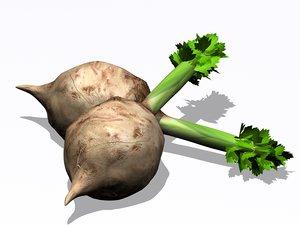 3d model of celery