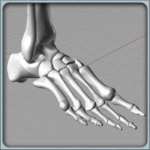3d model of igs foot bones solidworks