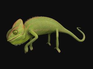 max chameleon