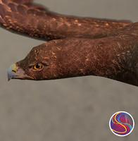 3ds eagle