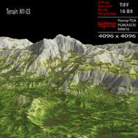 max terrain m1-03