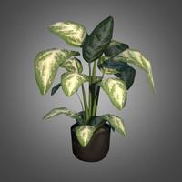 plastic potted plant obj