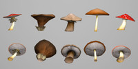 mushrooms 3d model