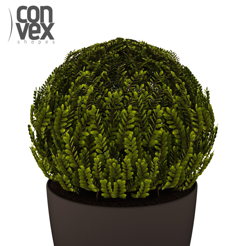 3d max potted plants 18