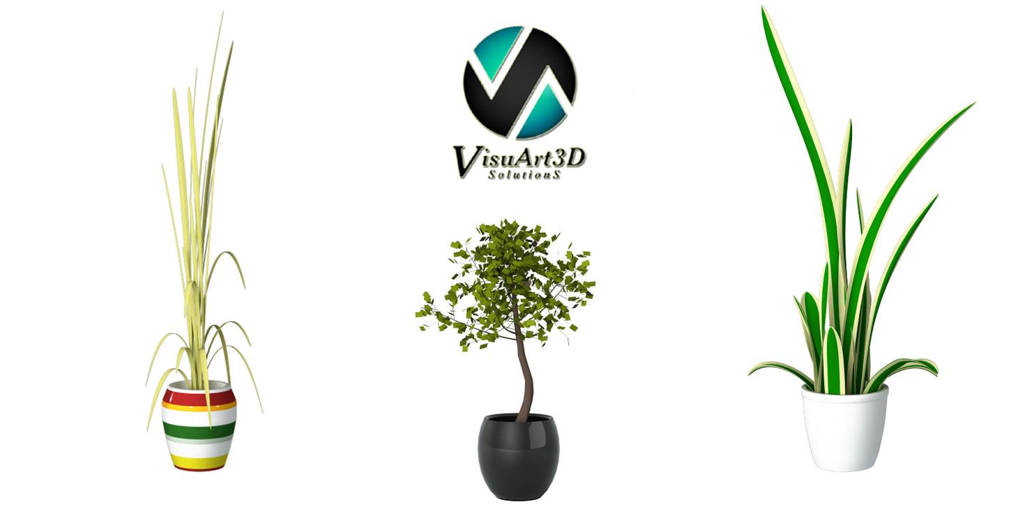 plants interior 3ds
