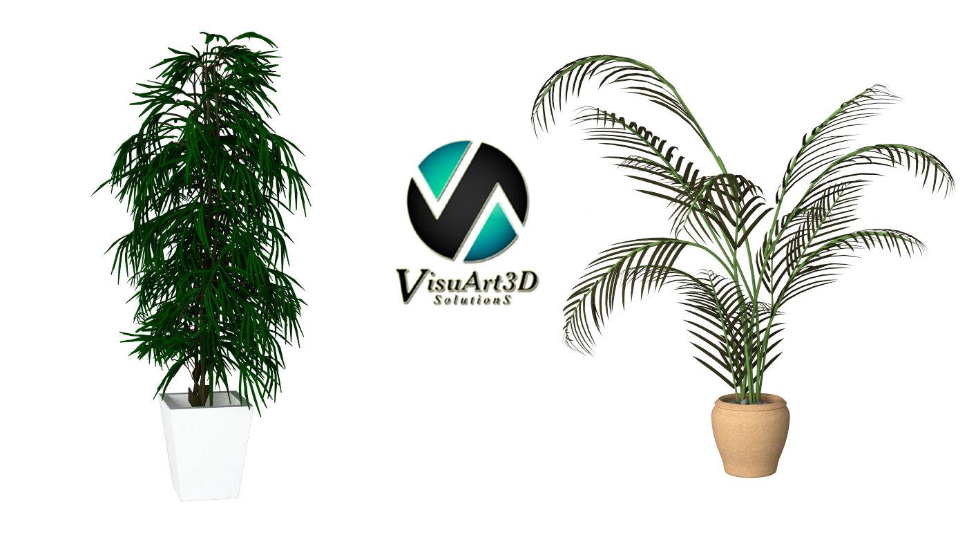 3d max plants interior palm