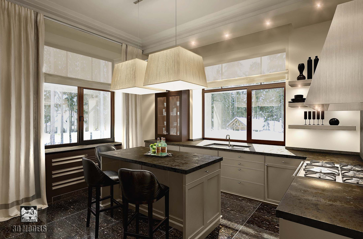 max modern kitchen scene interior