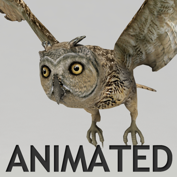 3d rigged owl model