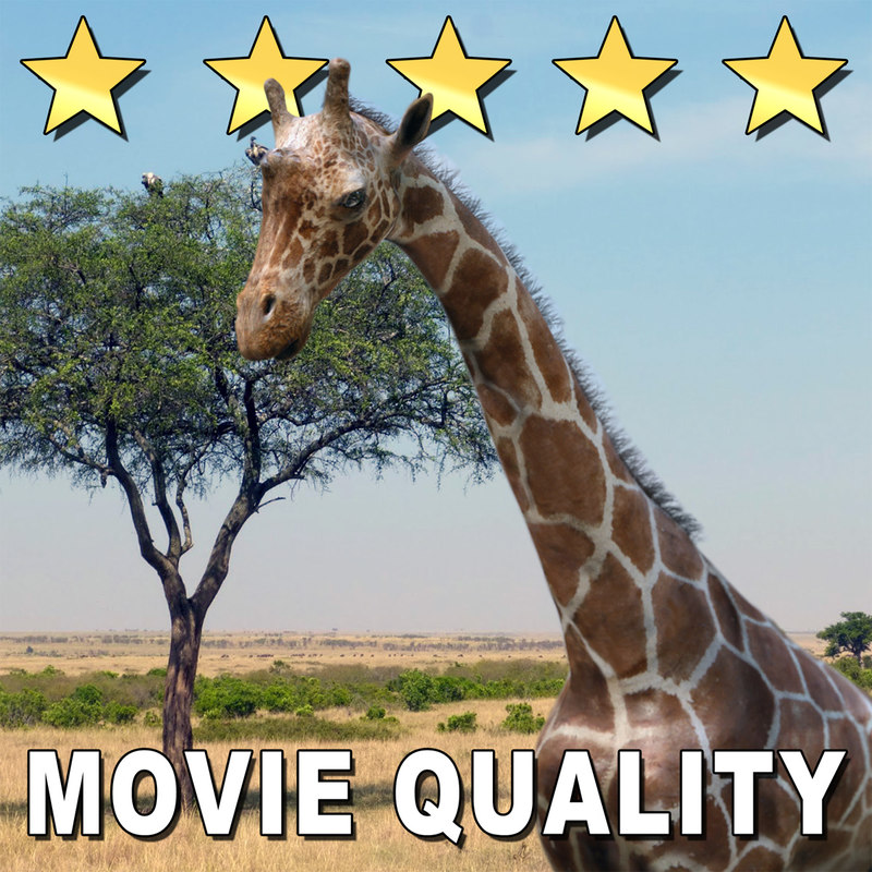 movie giraffe obj