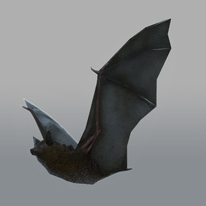 3d model rigged bat animations
