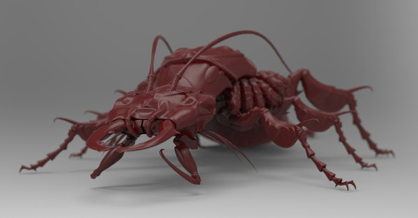 3d c4d insect