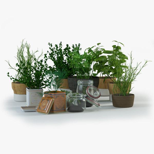 max spice herbs