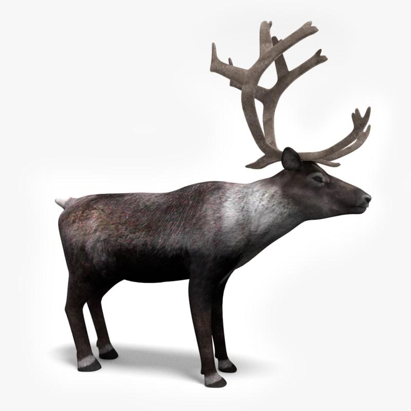 3dmax reindeer deer