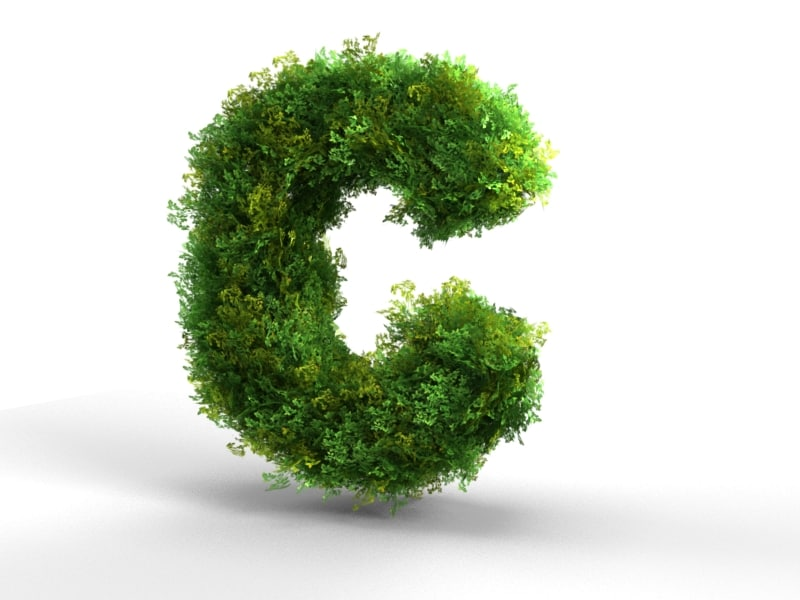 3d letter alphabet bush