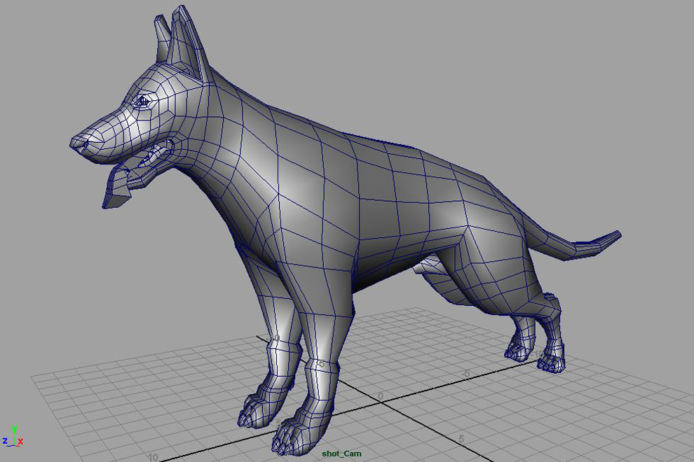 maya black german shepherd dog