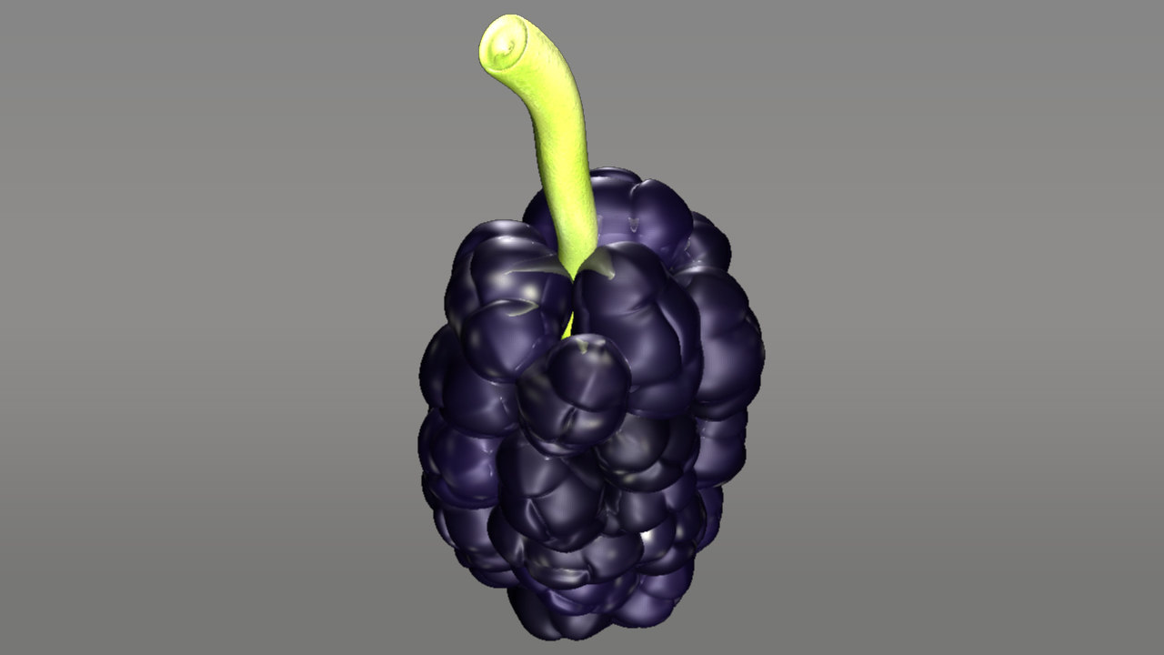 morus mulberry 3d model