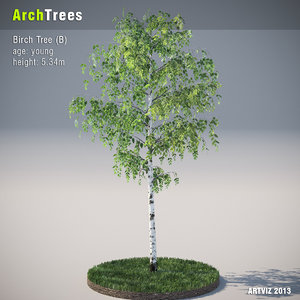 archtrees trees 3d model
