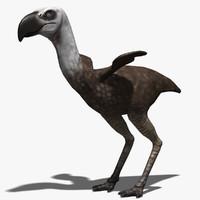 max phorusrhacos bird